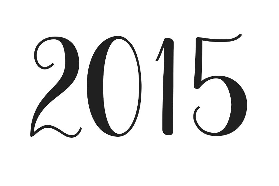 shaneandbee2015